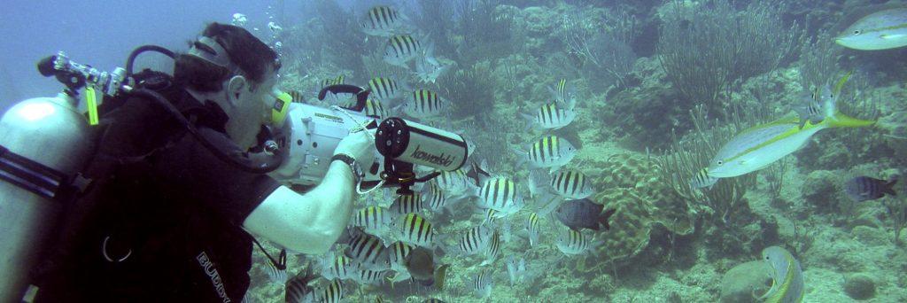 Gra underwater filming, where it all began
